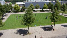 200618 Kubb Turnier 001
